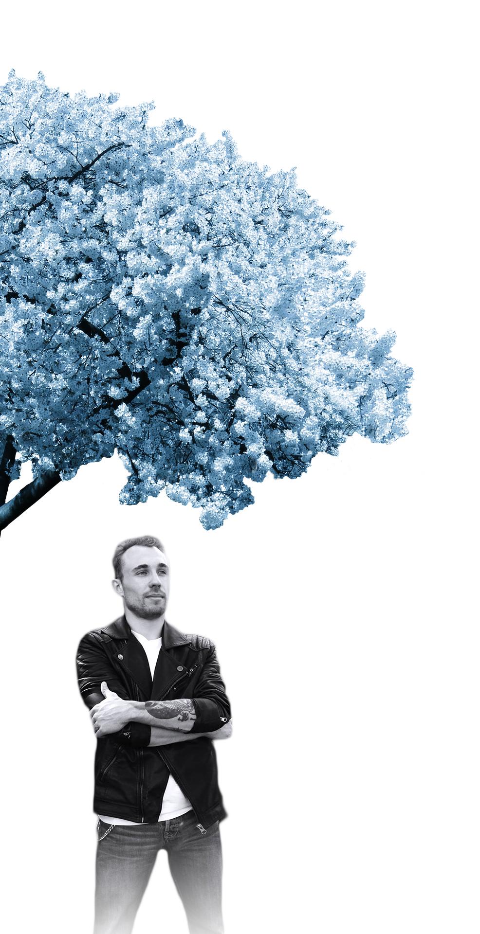 Photo de Arekisanda sous un cerisier aux feuilles bleues